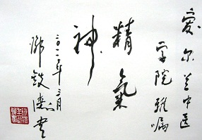 Calligraphy written by Professor Deng for the Irish College of TCM.